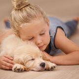 L'importance du rôle affectif des animaux familiers