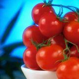Super tomates anti-cancer!