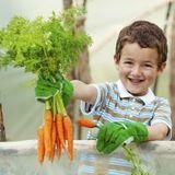 Pour lutter contre l'obésité, apprenez aux enfants à cultiver !