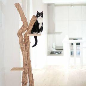 Arbre à chat épuré