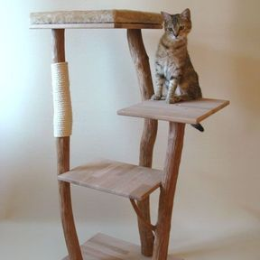 Arbre à chat minimaliste