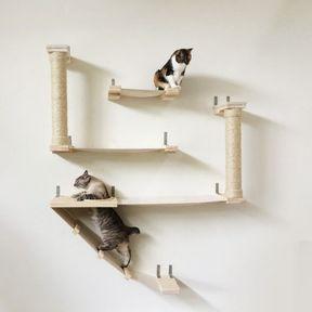 Arbre à chat mur