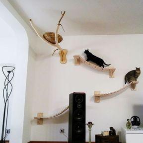 Arbre à chat sur un mur