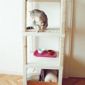 Arbre à chat tables