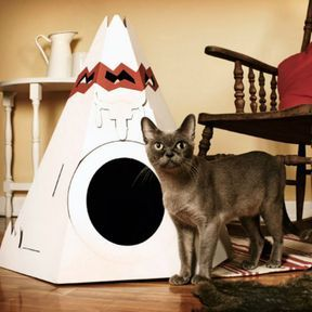 Une maison tipi pour votre chat