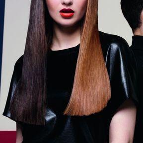 Quelle couleur de cheveux pour une brune 2015 @ Dessange