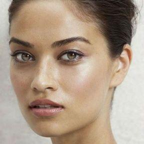Maquillage nude pour les yeux marrons