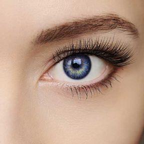 L'extension de sourcil par l'Atelier du Sourcil
