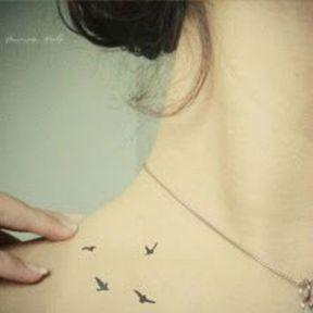 Tattoo oiseaux