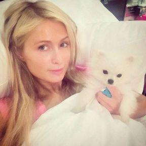 Le Wake Up Call de Paris Hilton
