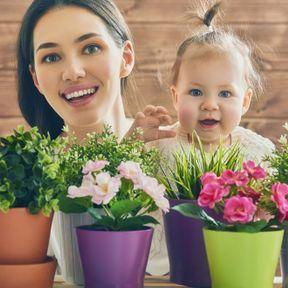 Vérifiez la toxicité de vos plantes