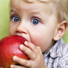 Les poussées dentaires entre 12 et 18 mois