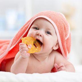 Les poussées dentaires entre 6 et 12 mois