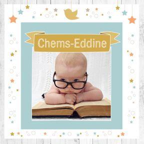 Chems-Eddine