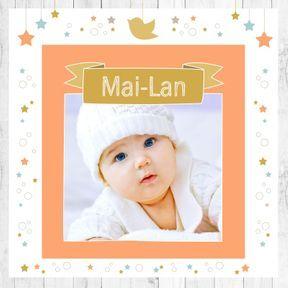 Mai-Lan