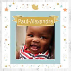Paul-Alexandre