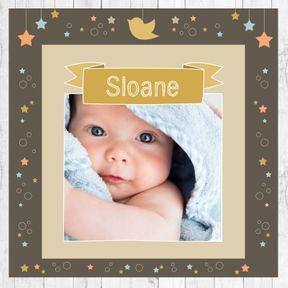 Sloan ou Sloane