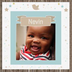 Névin