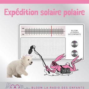 L'expédition solaire polaire