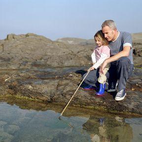 Pêcher à marée basse
