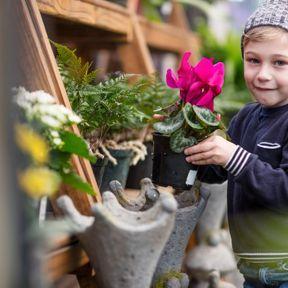 Rennes : Atelier jardinage chez Truffaut