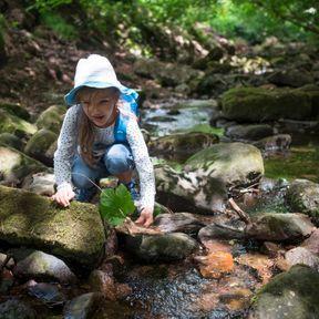 Île-de-France : Apprendre à survivre en forêt