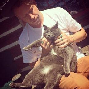 Macklemore et son chat