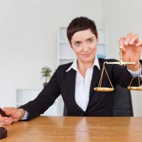Les neurones interconnectés des avocats