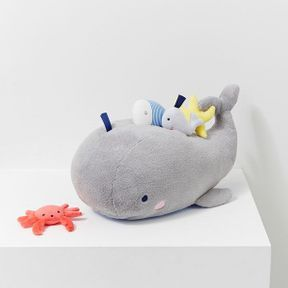 La baleine d'activités, Jacadi
