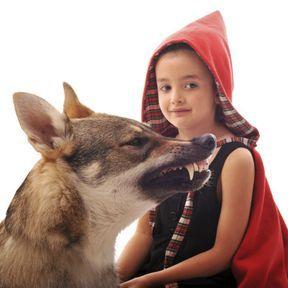 La peur du loup