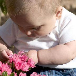 Que faire en cas d'ingestion d'une plante toxique par votre bébé ?