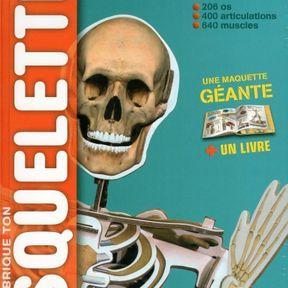 Fabrique ton squelette !