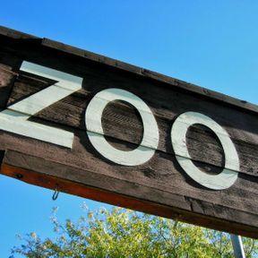Dormir au milieu d'un zoo