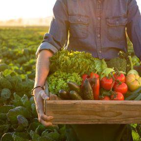 Résolution n°2 : on mange plus local