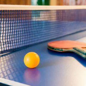 8. Le tennis de table avec 197 000 licenciés