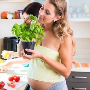 Un odorat développé pendant la grossesse