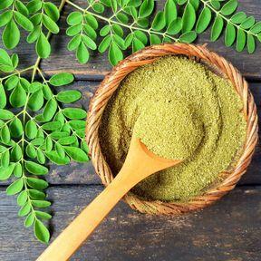 Le moringa (Moringa oleifera)