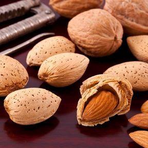 Les noix et les amandes