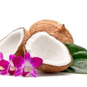 Le sucre de fleur de coco : 38 kcal la cuillère à café