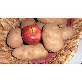 Astuce pour éviter les germes sur les pommes de terre