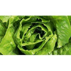 Astuce pour redonner du croquant à une salade flétrie