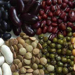 Haricots, fèves, soja, pois chiches, lentilles...