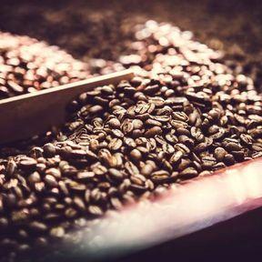Du café pour prévenir certains cancers