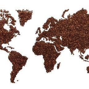 Comment connaître sa consommation de caféine ?