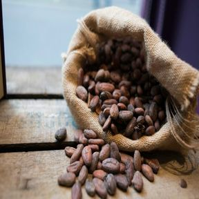 Choisir un chocolat riche en cacao