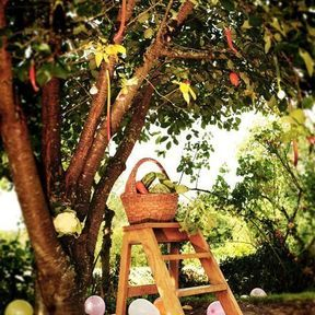 L'arbre potager