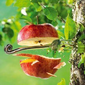 La pomme de Guillaume