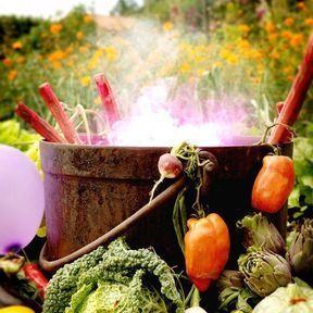 Potion du jardin