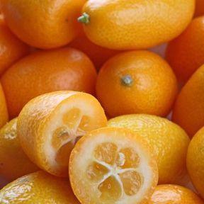 Le kumquat