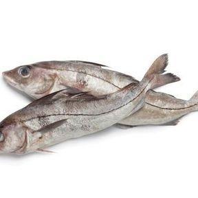 L'églefin (ou haddock)